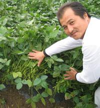 新潟しんどおり茶豆生産組合の代表・玉木豊さん