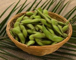 お中元のご贈答品に新潟産の枝豆・茶豆を
