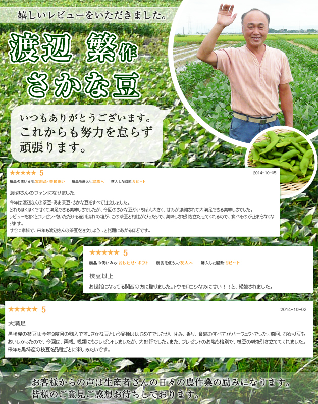 さかな豆は8月下旬から9月頃に出荷。