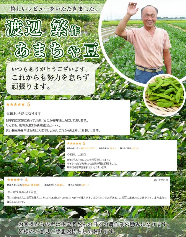 くろさき茶豆の次はあまちゃ豆。こちらも甘くて美味しいです!